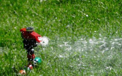 FAQ Saint-Lazare Watering Ban
